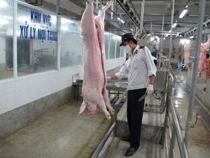 Quản lý giết mổ gia súc, gia cầm dịp giáp Tết - Kỳ 2: Kiên quyết xử lý các trường hợp vi phạm