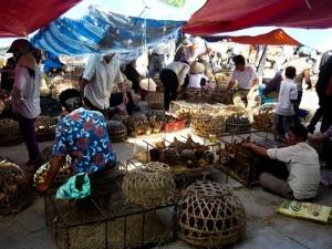 Hải Phòng: Nỗi lo về an toàn thực phẩm
