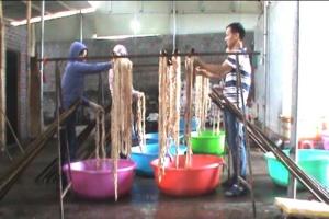 Quảng Ninh: Bắt quả tang cơ sở chế biến hơn 1 tấn nội tạng không rõ xuất xứ