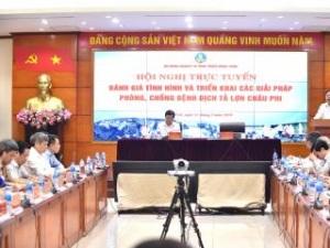 Phó Thủ tướng chủ trì hội nghị phòng, chống dịch tả lợn châu Phi