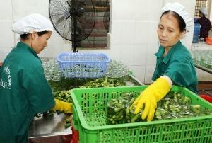 Nâng tầm nông sản bằng mô hình chuỗi an toàn thực phẩm